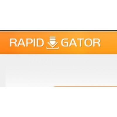 Rapidgator 高级会员30天